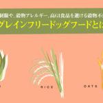 グレインフリードッグフードとは?炭水化物の制限や、穀物アレルギー、高GI食品を避ける穀物不使用のレシピ