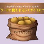 ドッグフードに使われるジャガイモについて。安定供給が可能な欠かせない原材料