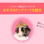 おすすめドッグフード!ペット栄養管理士の評価、評判と口コミを掲載