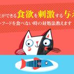 キャットフードに飽きる?飼い主ができる猫の食欲を刺激する与え方!食べない時の対処法教えます