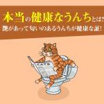猫の本当の健康なうんちとは?艶があって匂いのあるうんちが健康な証!