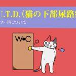 F.L.U.T.D.(猫の下部尿路疾患)用キャットフードについて