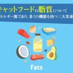 キャットフードの脂質について。エネルギー源であり、多くの機能を持つ三大栄養素