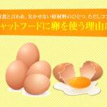 キャットフードに卵を使う理由は?完全栄養食と言われ、欠かせない原材料のひとつ。ただしコストは高い