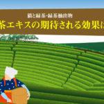 猫と緑茶。キャットフードに使われる緑茶エキス(緑茶抽出物)の期待される効果は?