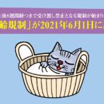 「8週齢規制」が2021年6月1日に施行。子猫は生後8週間経つまで受け渡し禁止となる規制が始まりました。