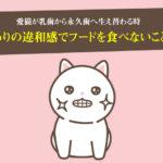 乳歯から永久歯へ!猫の歯の生え替わりの違和感で好きなフードも食べないことがある!